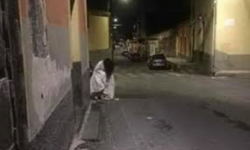 avvistato  un  fantasma a  Catania