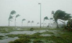 la  furia  dell'uragano  Katrina  devasta   Haiti    uccidendo  8000 persone  , e molti    ancora  senza  casa